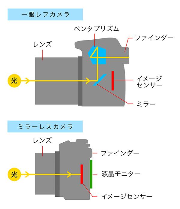 一眼レフとミラーレス一眼の構造の違い