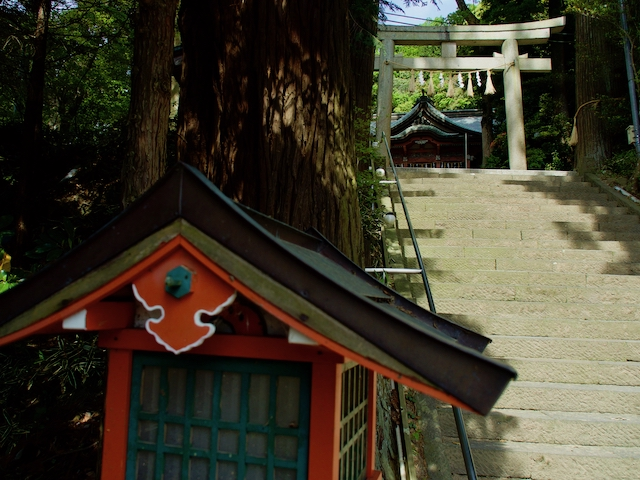 高瀧神社の階段からの画像