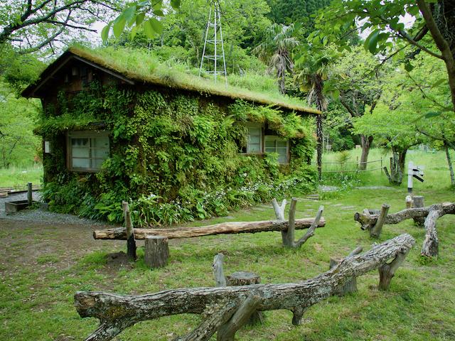 森ラジオステーションの画像