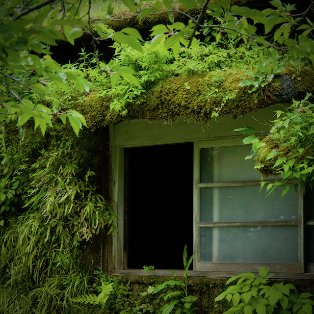 森ラジオステーションの窓からの画像
