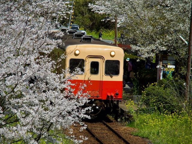 飯給駅に到着する列車の画像