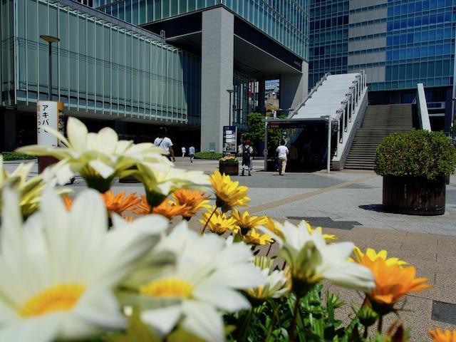 秋葉原駅・電気街口前広場(UDX方向)の画像