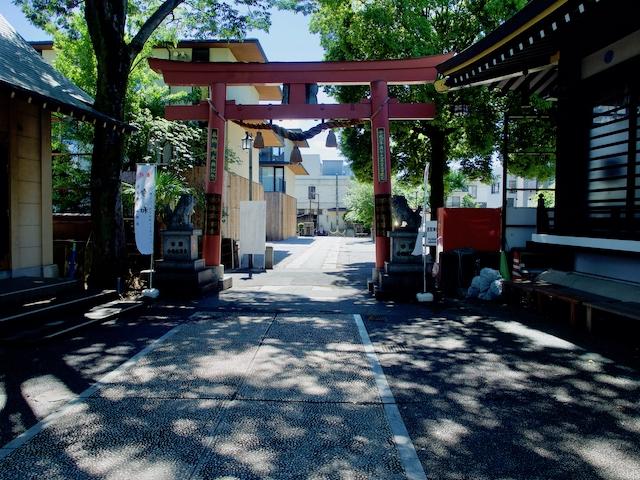 須賀神社・境内の画像
