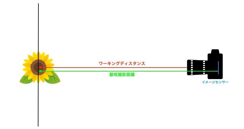 最短撮影距離とワーキングディスタンスの違いを図解した画像