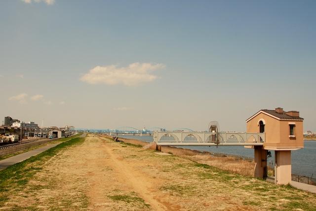 江戸川の土手の画像