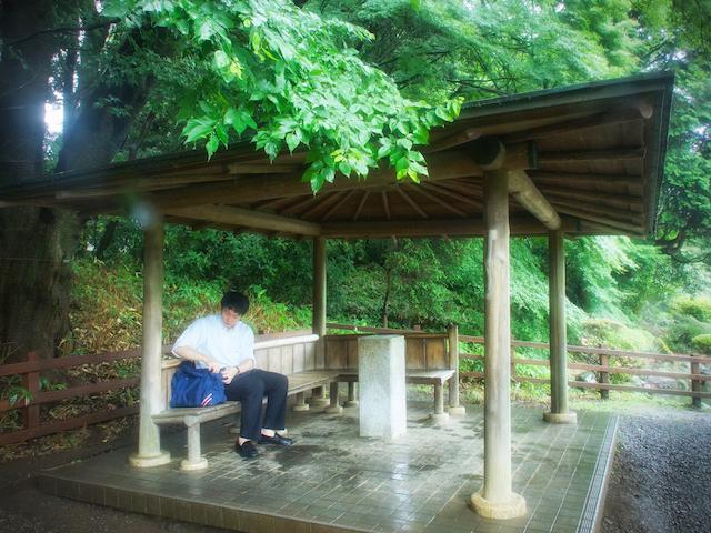 新宿御苑・東屋の画像