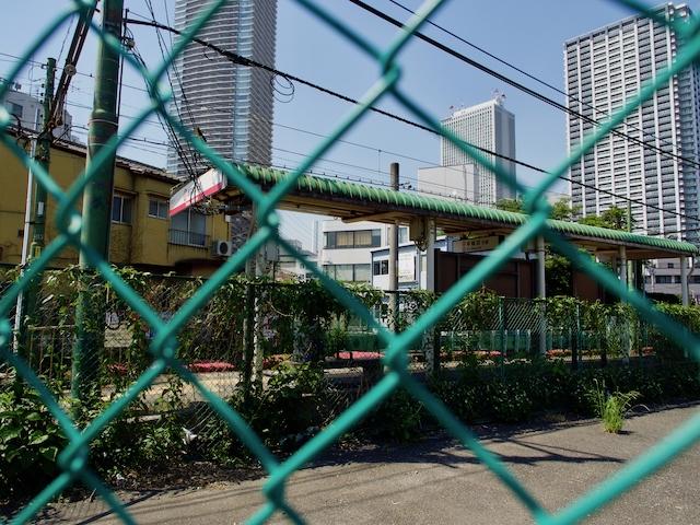 都電荒川線・雑司ヶ谷駅の画像