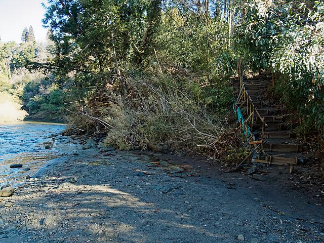 養老川の河原の分かれ道の画像