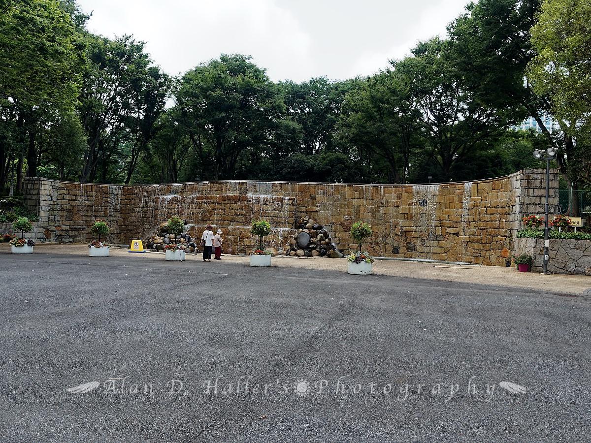 新宿中央公園水の広場の画像