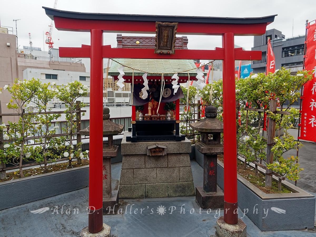 朝日稲荷神社の屋上拝殿の画像