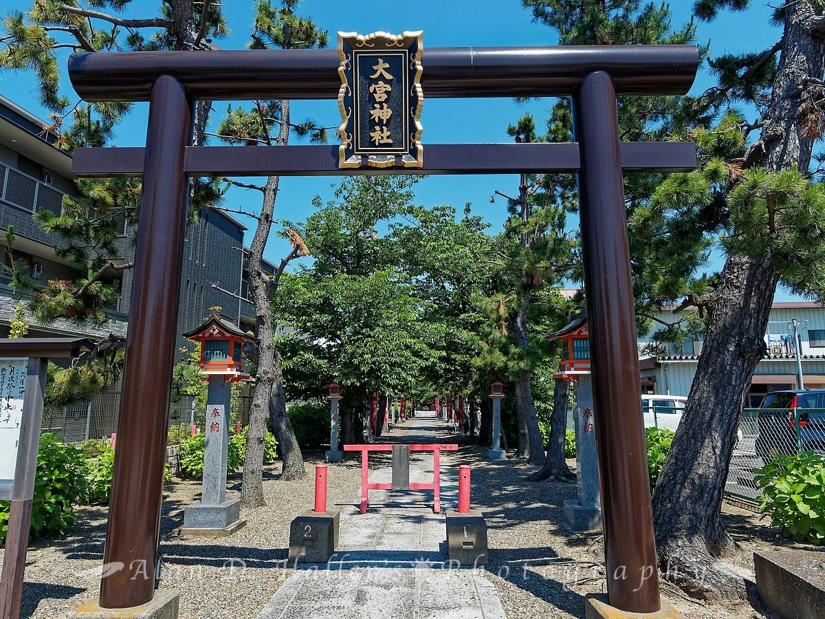 大宮神社の正面入口鳥居の画像