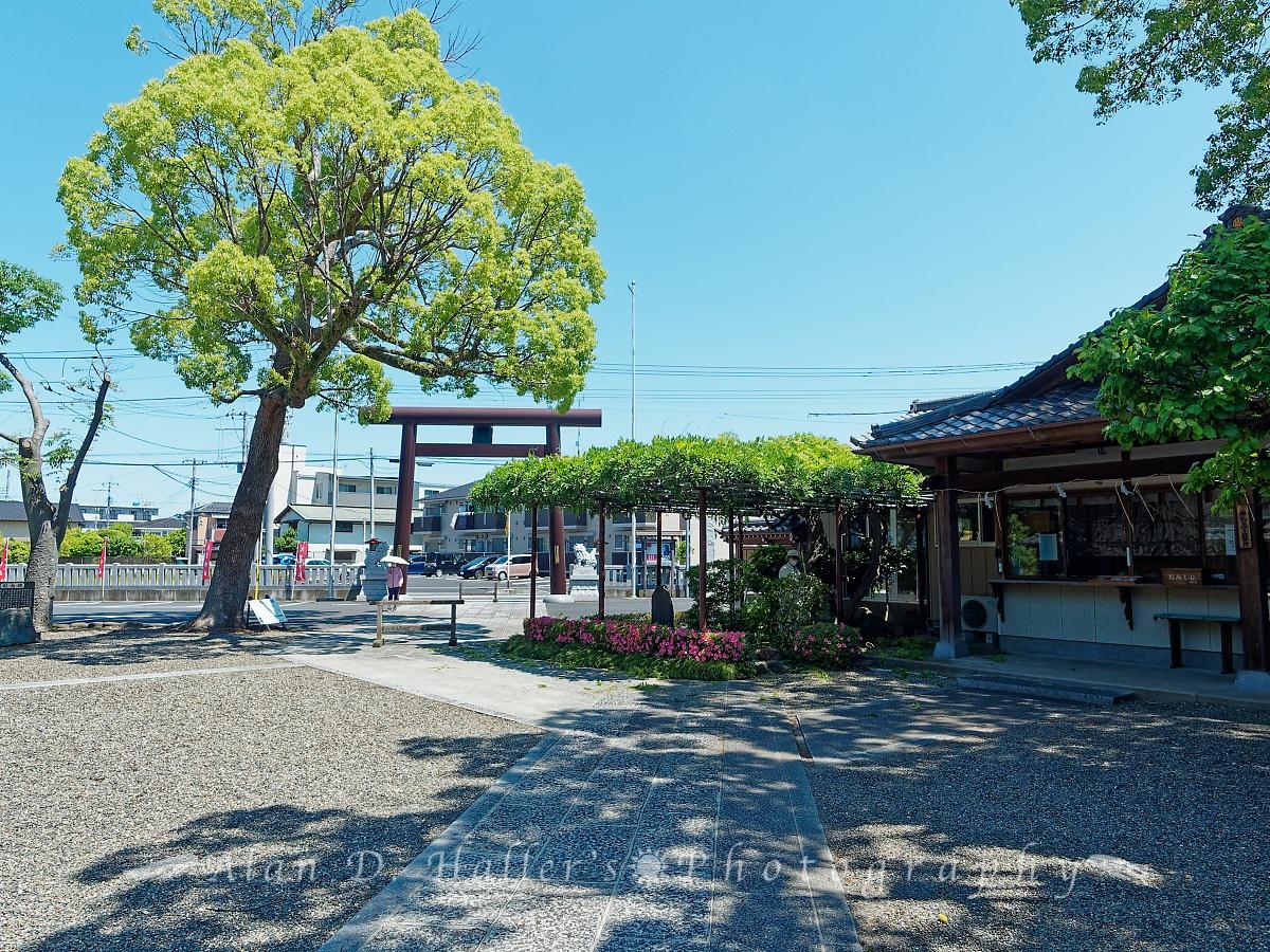 大宮神社の裏口参道の画像