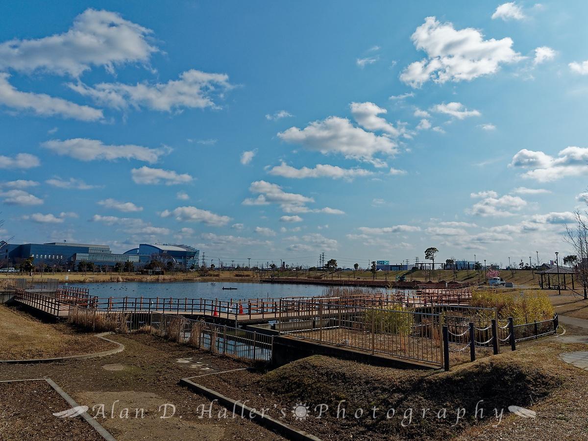 上総更級公園の池の画像