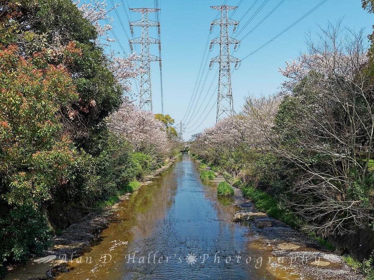 北五井緑道の端から眺めた画像