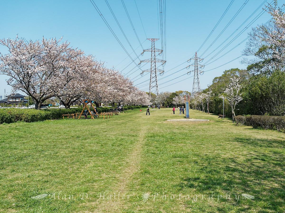 北五井緑道の遊び場の画像