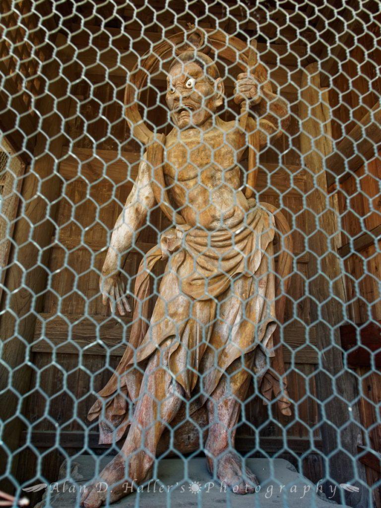 医王山清浄院国分寺の阿形仁王像
