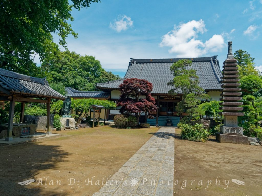 医王山清浄院国分寺の本堂