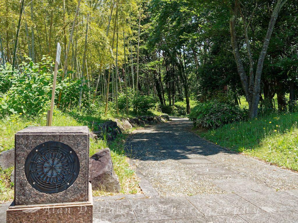 国分寺中央公園の遊歩道