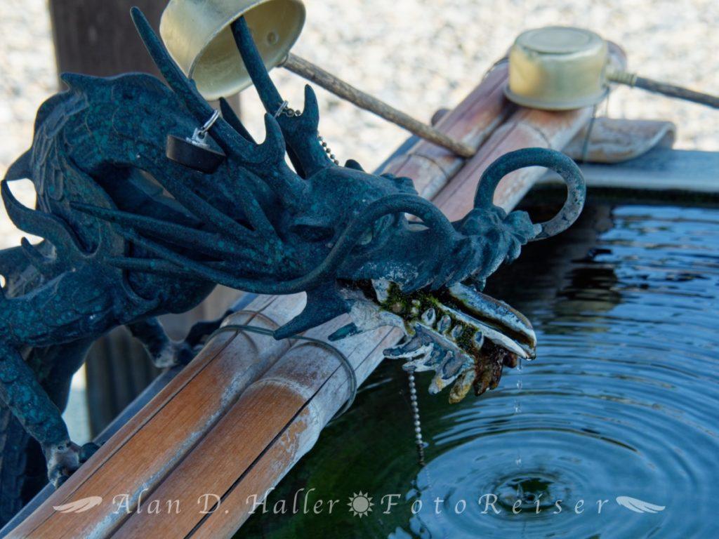 釈蔵院の手水舎の龍像